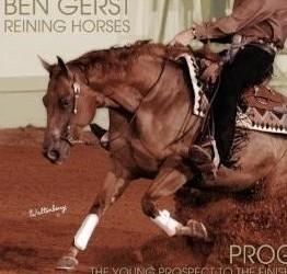 Reining Horse Training, Non Pro Coaching, and Reining Clinics